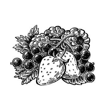 Irina Sztukowski - Berries From Forest