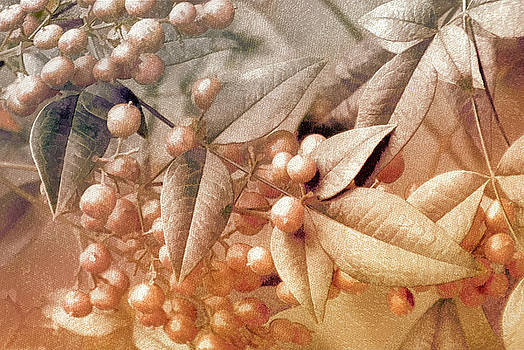 Holly Kempe - Berry and Leaf Brocade