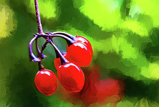 Steve Harrington - Berry Berry Red - Impasto