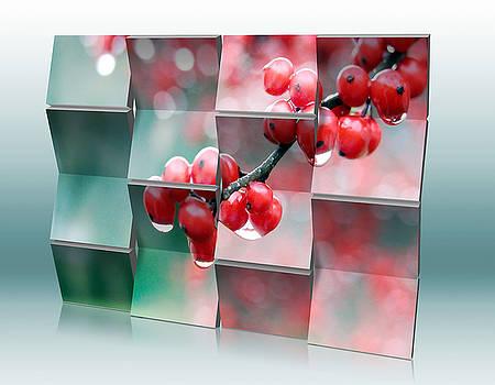 Berry Rain by Marvin Blaine