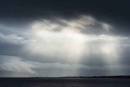 David Taylor - Berwick Light Beams
