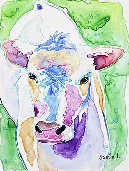 Bessie the Cow by Shaina Stinard