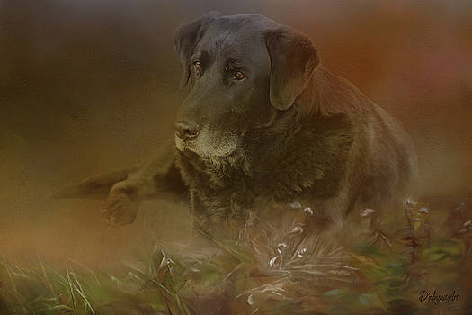 Best Friend by Theresa Campbell