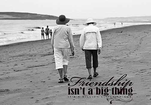 Brenda Giasson - Best Friends