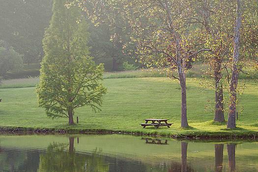 Best Picnic Spot by Victoria Winningham