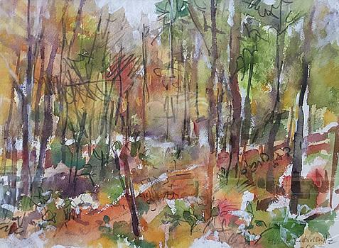 Bethany Woods by Abbie Rabinowitz