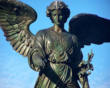 Anne Ferguson - Bethesda Fountain Angel