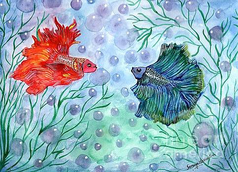 Betta magic by Saranya Haridasan