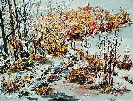 Between frozen waters by Alfred Motzer
