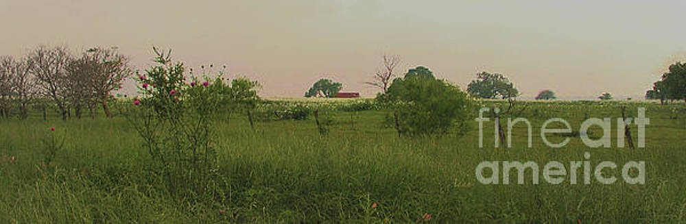 Between La Grange and Columbus Texas Hwy 71 Panorama Circa 2007 by Felipe Adan Lerma