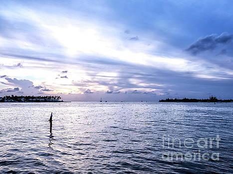 John Rizzuto - Between Sunset Key and Wisteria Island