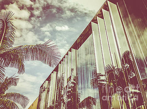 Beverly Hills - Rodeo Drive - Palm Reflections III by Pete Edmunds