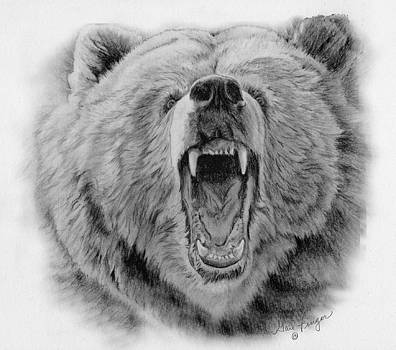 Beware of The Bear by Gail Finger