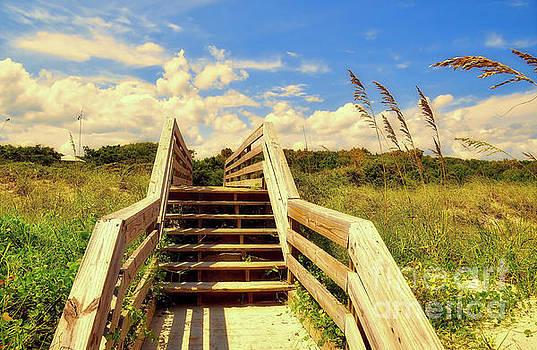 Beyond The Beach by Kathy Baccari
