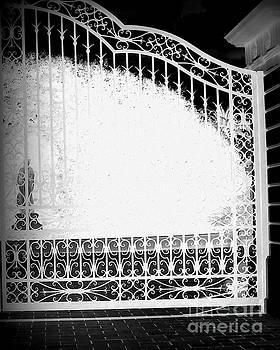 Beyond The Gate by Vicki Lynn Sodora