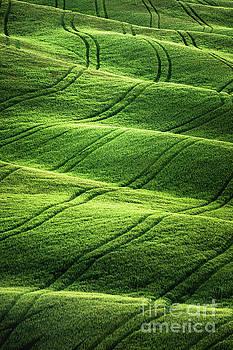 Beyong Green Waves by Evelina Kremsdorf
