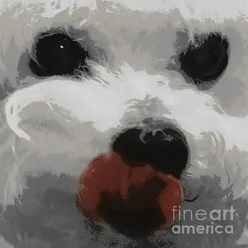 Diann Fisher - Bichon Frise Puppy Dog Love Art