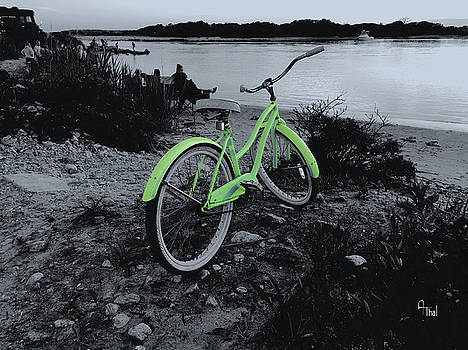 Bicycle by Alan Thal