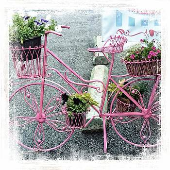 Bicycle And Flowers by Kathleen Struckle