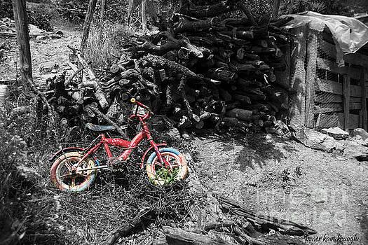 Bicycle by Bener Kavukcuoglu