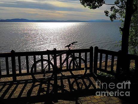 Felipe Adan Lerma - Bicycle View