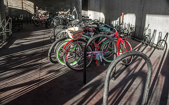 Venetia Featherstone-Witty - Bicycles And Shadows