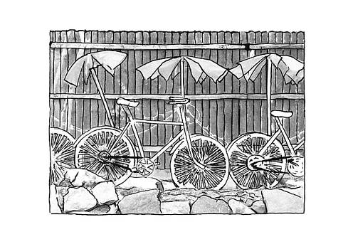 Bicycles by DeAnna Hutson
