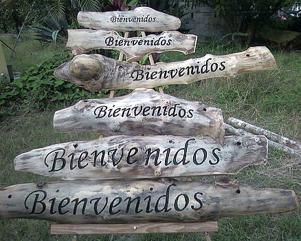 Bienvenidos by Calixto Gonzalez