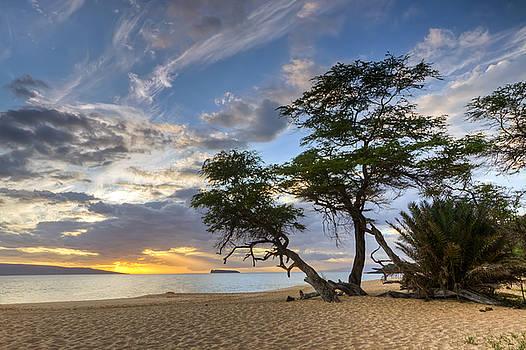Big Beach Maui Hawaii Sunset by Dustin K Ryan