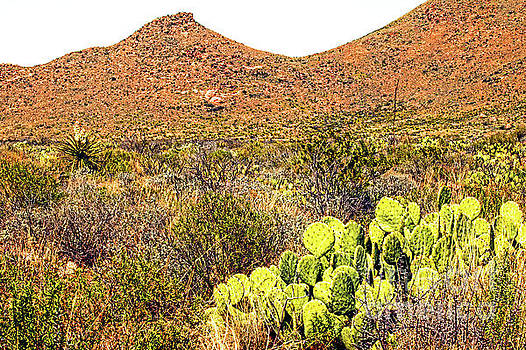 Big Bend National Park 8443AT by Doug Berry