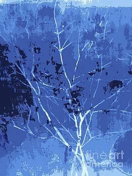 Big Birtch by Deborah MacQuarrie-Selib