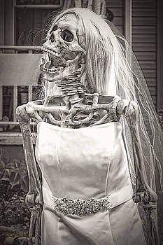 LeeAnn McLaneGoetz McLaneGoetzStudioLLCcom - Big Boned Skeleton Bride