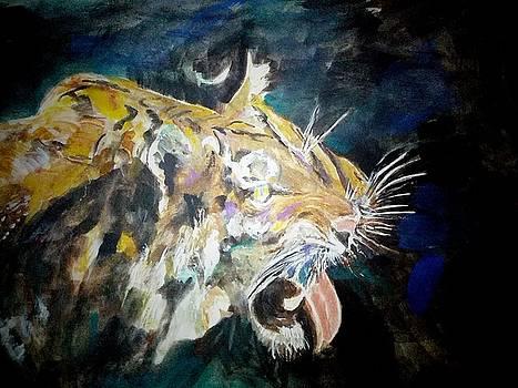 Big cat by Khalid Saeed