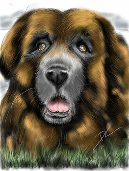 Big Dog by Darren Cannell