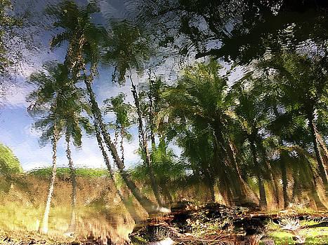Big Island Reflections by Art Shimamura
