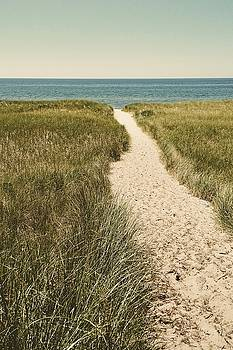 Big Lake Beach Path by Michelle Calkins