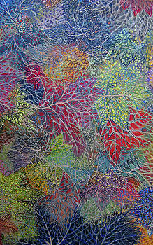 Big Leaf Maple Abstract by Anne Havard
