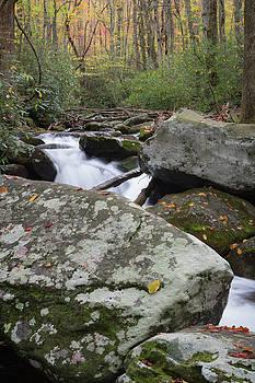 Big lichen covered rocks in a flowing creek in autumn by Natalie Schorr