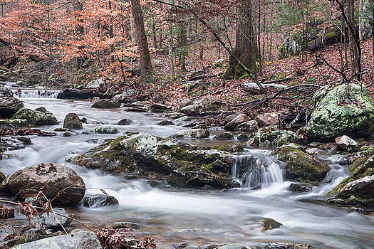 Big Mary's Creek by Keith Bowen