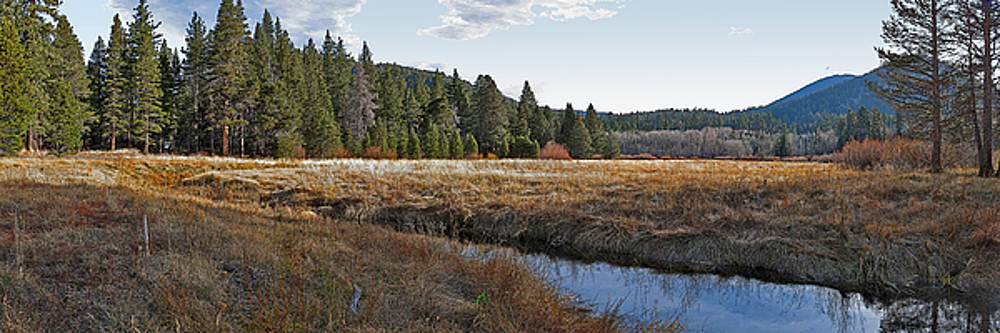 Big Meadow Creek Panorama by Larry Darnell