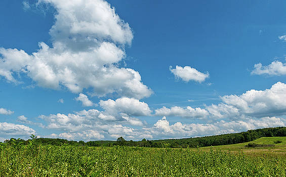 Big Meadows Big Sky 3 by Lara Ellis