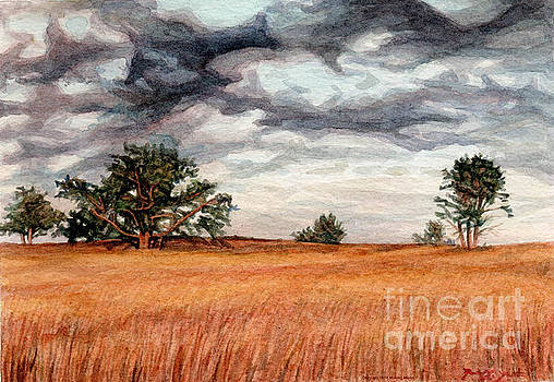 Big Meadows by Michael Martin