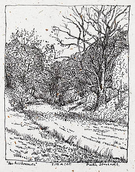 Martin Stankewitz - big oak, landscape drawinh in ink