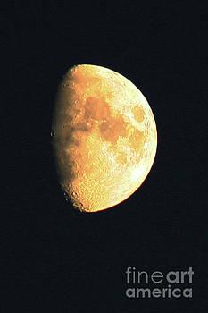 Big Old Moon by Alan Harman