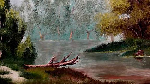 Big Sandy Creek by Cleautrice Smith