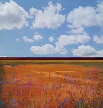 Big Skies by Chris Emerson
