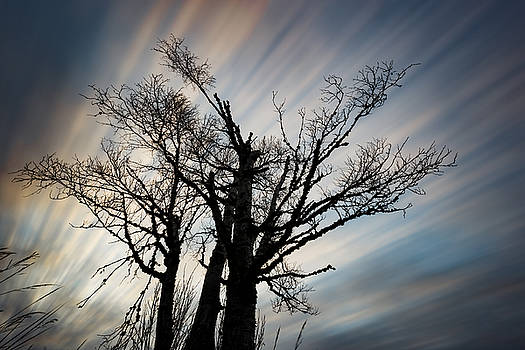 Big Sky by Jakub Sisak