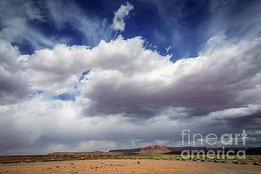 Big Sky by Joan McCool