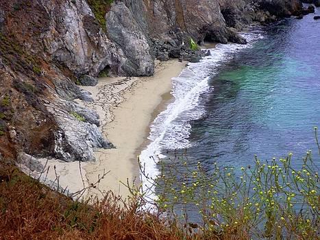 Big Sur Beach by Julie Lourenco
