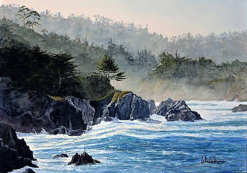 Big Sur by Bill Hudson